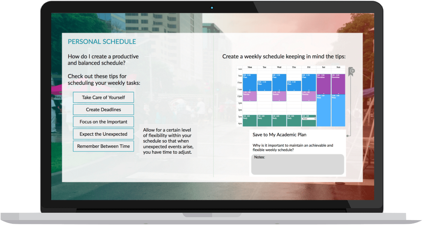 An example of CSEUB's academic planner tool for students